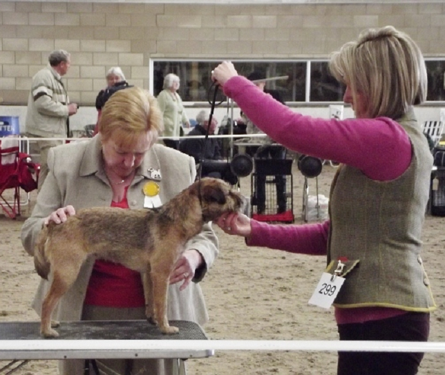 Handling at a Show with CDCS